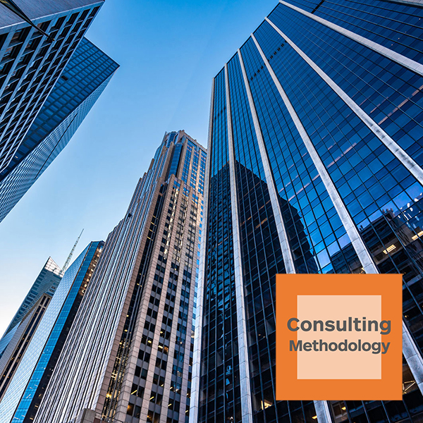 voice-over E-learning Consulting