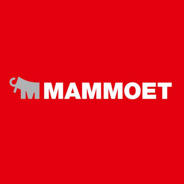 Mammoet voice-over, The Biggest Thing we move is Time, B2b communications